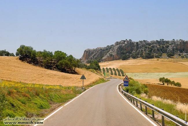 Olvera القرية البيضاء في أسبانيا 310