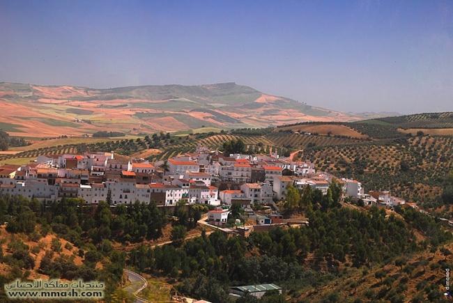 Olvera القرية البيضاء في أسبانيا 710