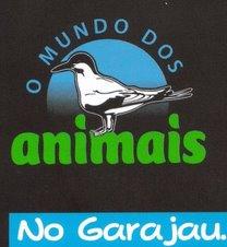 """loja de animais """"Mundo dos animais"""" Mundoa10"""