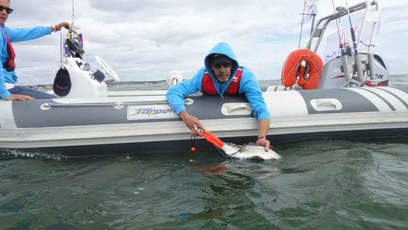 SAILTICA Fishing: 31 Aout et 1er Septembre à Pornichet - Page 4 Dsc02310