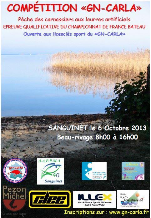 Compétition GN Carla Sanguinet 06/10. 12336010