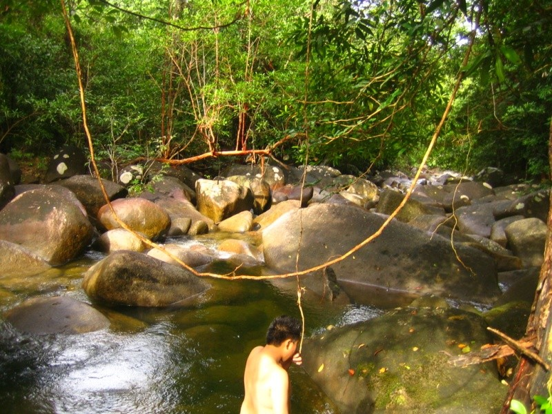 Borneo Tracks: Gunung Piuh Forest Resort River_10