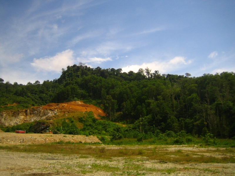 Borneo Tracks: Gunung Piuh Forest Resort Scenic11