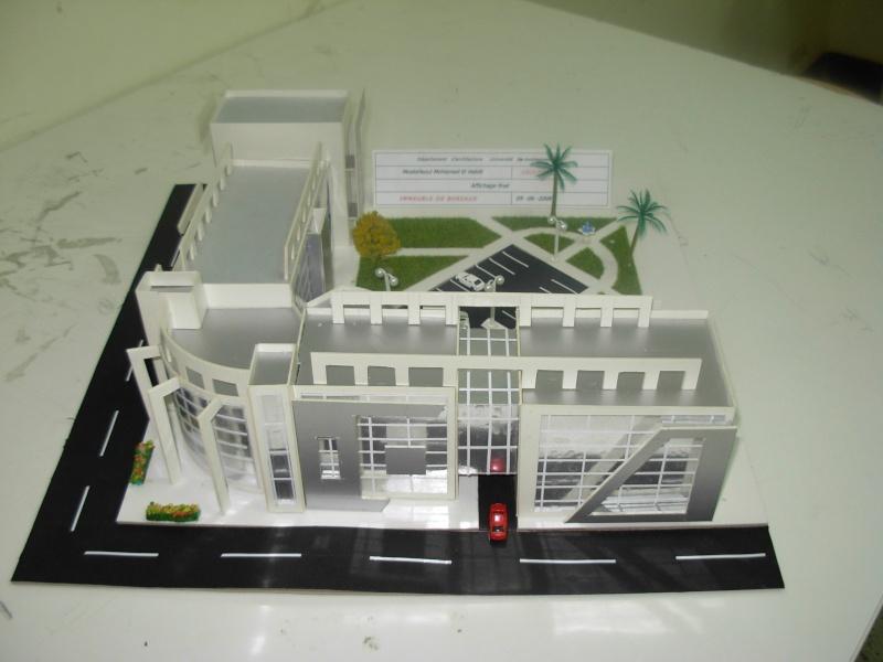 projet final 3eme annee 1er groupe 2007.2008 Dscn0731