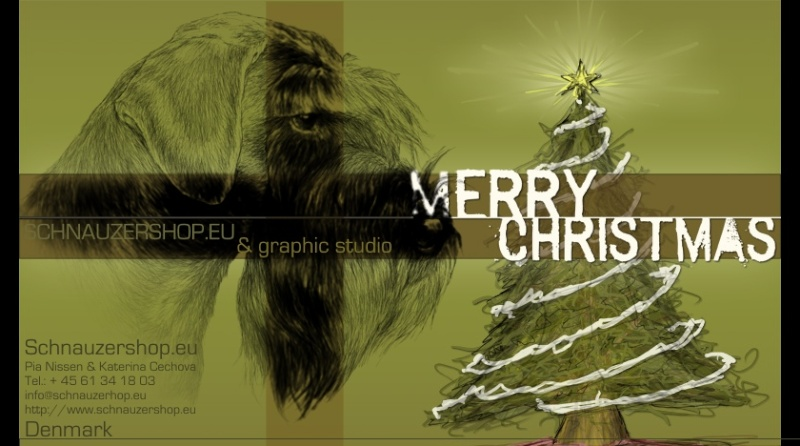 Season's greetings from Sternenhochs Pf_fir10