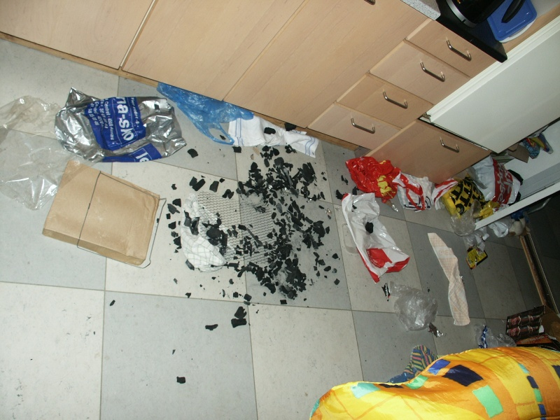 If you are leaving your dog alone - post pics of damages in house Pict0010