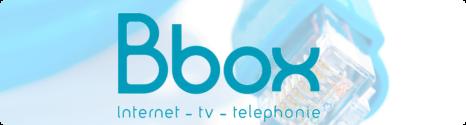 Bbox séduit 605.000 nouveaux abonnés en 2012 13623110
