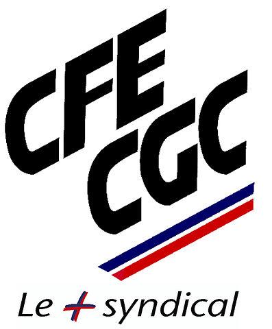 Le syndicat  CFE-CGC contre la 4G en 1.800Mhz de Bouygues Telecom 397px-10