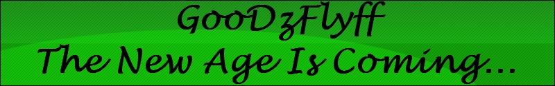 GooDzFlyFF Banner11