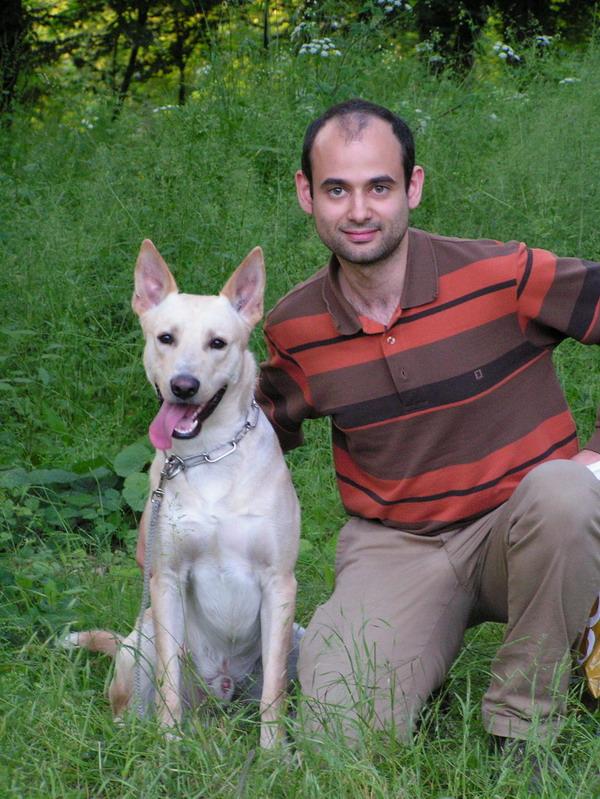 Sos FA pour Ulysse 4 ans , croisé berger-labrador (40) Ulysse13