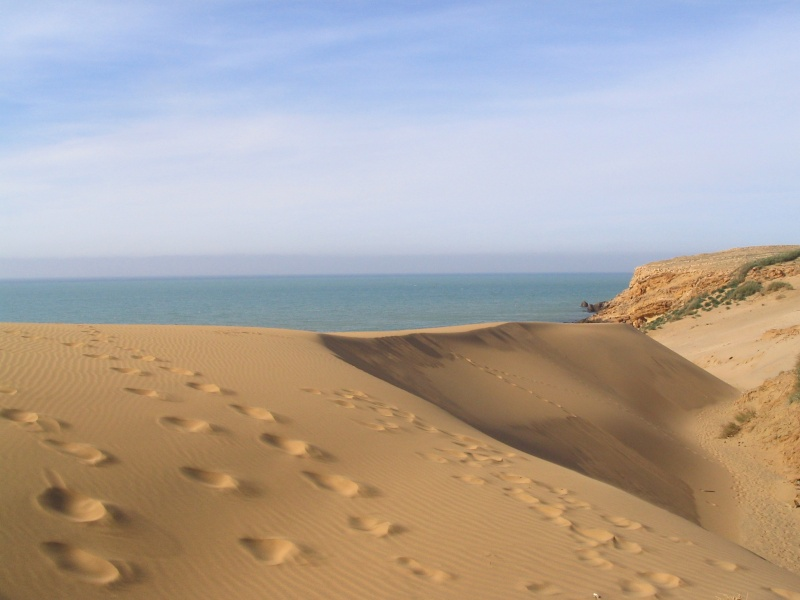 صور منطقة الفنار بقرب من شاطئ الشعايبية (بلدية) بن عبد المالك رمضان Soutze18