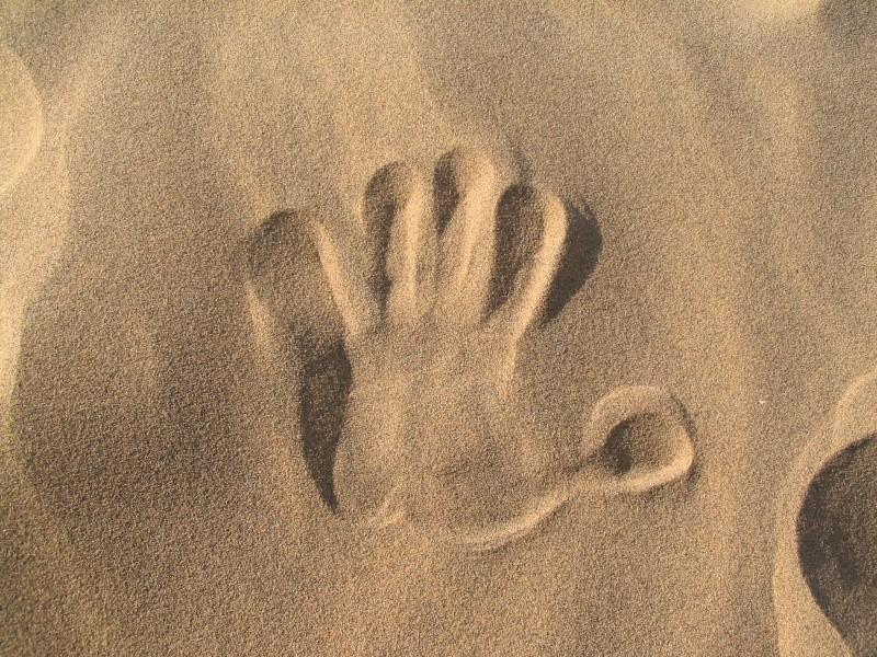 صور منطقة الفنار بقرب من شاطئ الشعايبية (بلدية) بن عبد المالك رمضان Soutze19