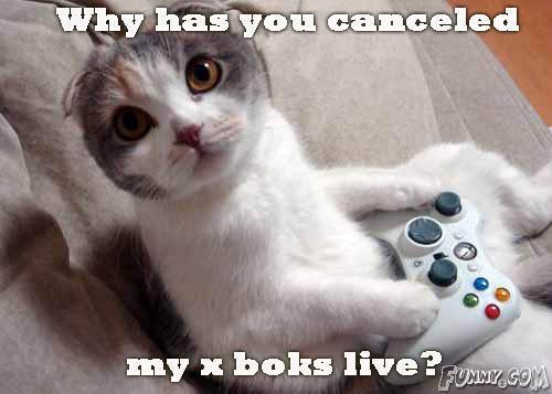 Funny Xbox_l11