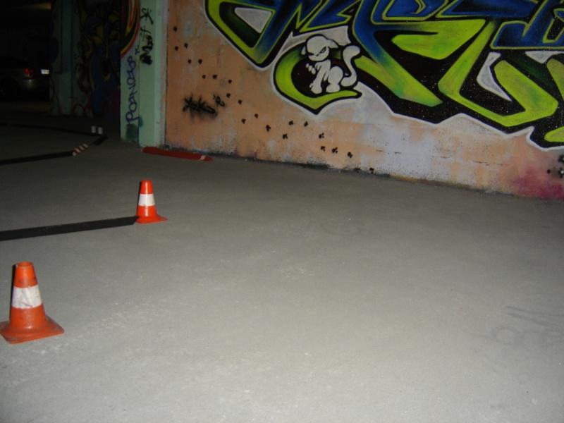 [Angoulème] session du 30 novembre 2008 Dsc06312