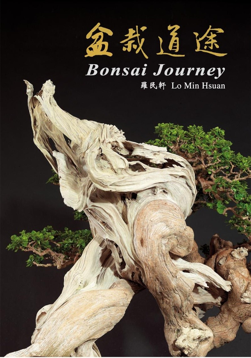 Bonsai story from 1960 to 2010 Ae11