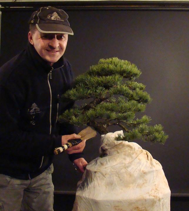 Pinus mugo 2004 - Page 2 Mni_710