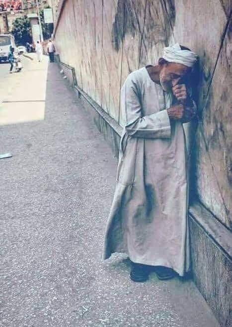 أنيابها غرزت بنا - تغريد منصور  81224110