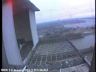 Nijmegen/Centrale Gelderland  Mariken ~ Moenen  2013 Cg217