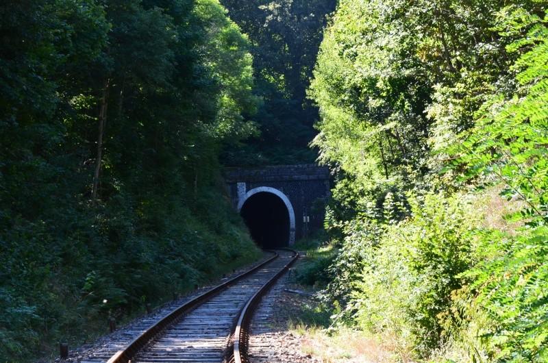 Train Gentiane Expres....... Dsc_0112