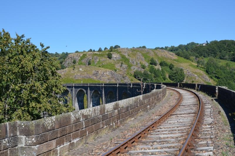 Train Gentiane Expres....... Dsc_0113