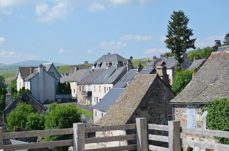 Village d'Apchon.... - Page 3 Dsc_0210