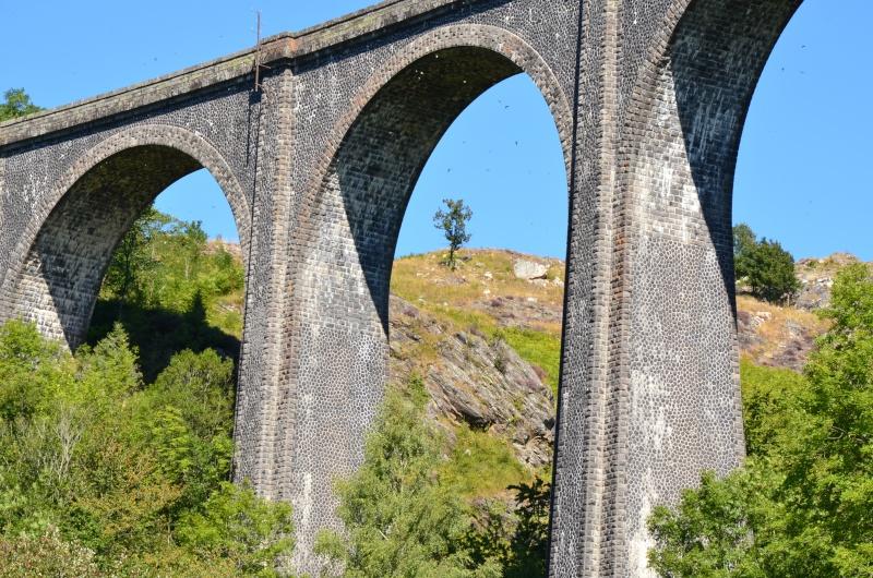 Train Gentiane Expres....... Dsc_0220