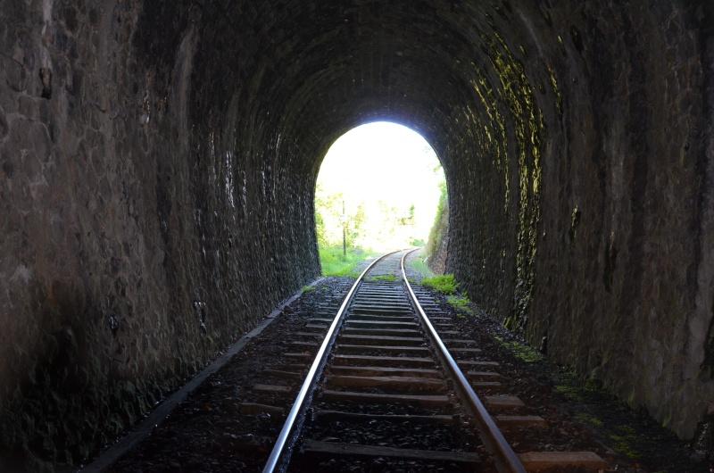 Train Gentiane Expres....... Dsc_0223