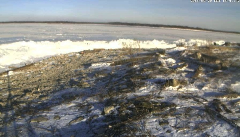 Grey Seal webcam - Page 13 Vlcsna18