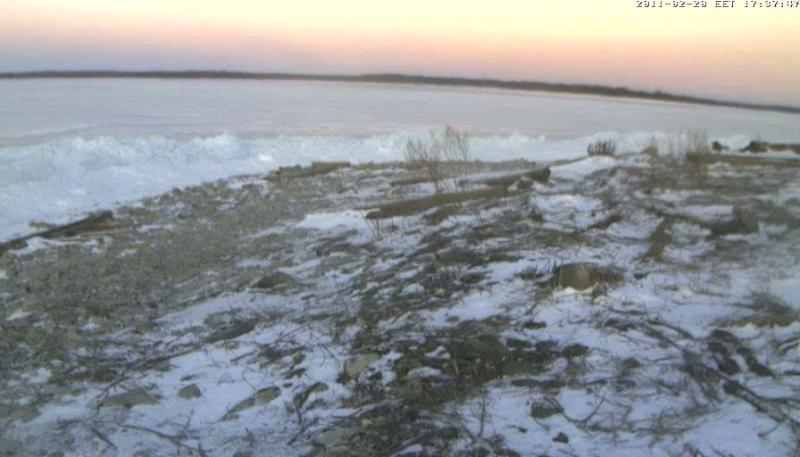 Grey Seal webcam - Page 13 Vlcsna19