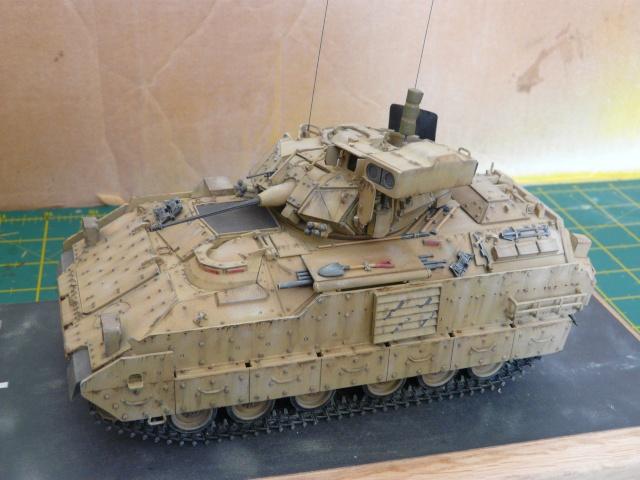 M2 Bradley Tamija 1-35  - Page 2 P1080319
