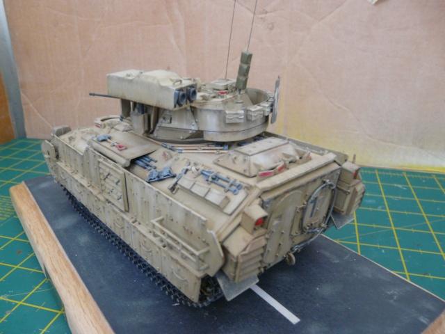 M2 Bradley Tamija 1-35  - Page 2 P1080320