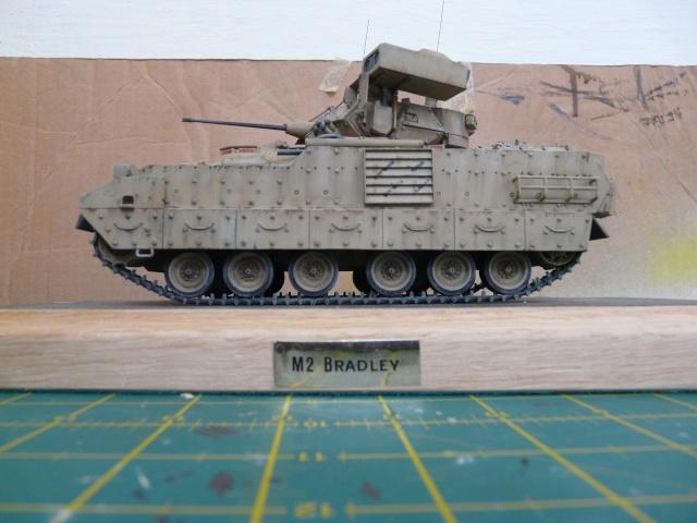 M2 Bradley Tamija 1-35  - Page 2 P1080321