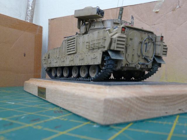 M2 Bradley Tamija 1-35  - Page 2 P1080323