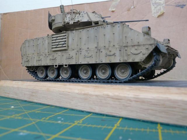 M2 Bradley Tamija 1-35  - Page 2 P1080324