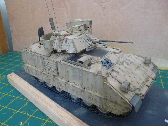M2 Bradley Tamija 1-35  - Page 2 P1080325