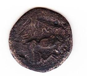 """Drachme grecque pour l'Illyrie, dite """"à la vache allaitante"""" Scn_0011"""