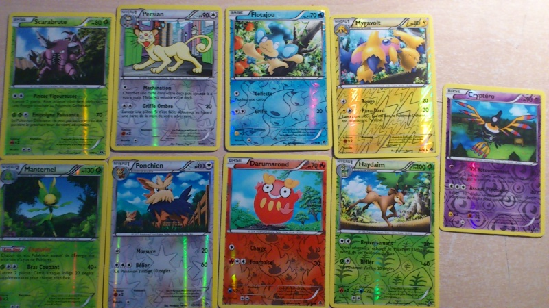 Cartes Pokémon (Boosters, Echanges...) Dsc_0313