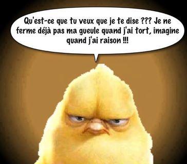 Humour en image ... - Page 5 Poussi10