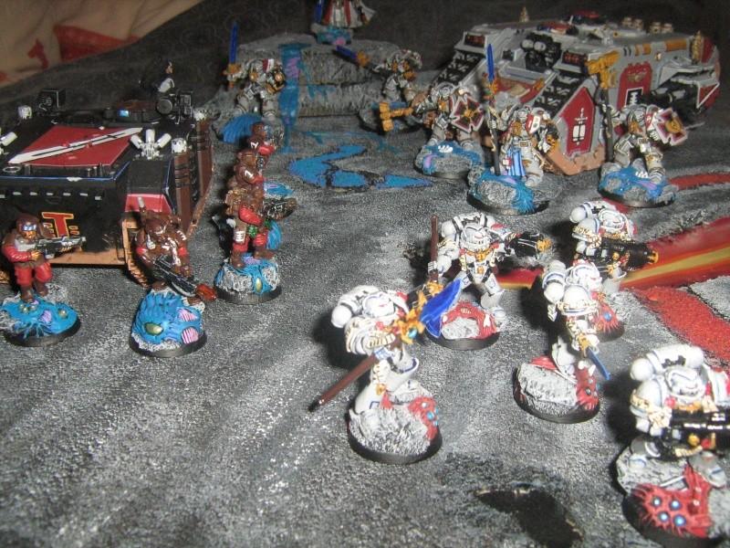 Mon plateau de présentation pour mes chevaliers gris Img_1511