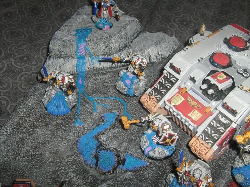 Mon plateau de présentation pour mes chevaliers gris Img_1512