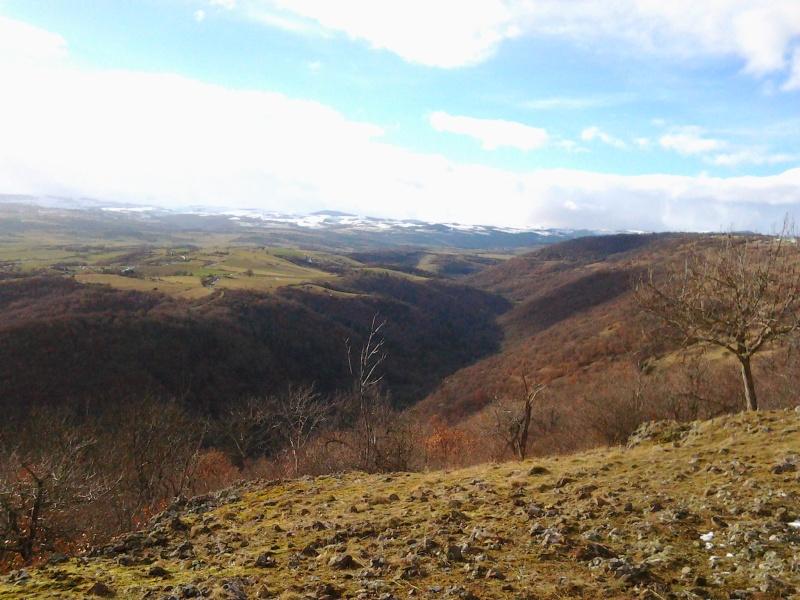 Un petit bout d'Auvergne Photo011