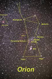 Reconnaitre les races Galactiques Orion10