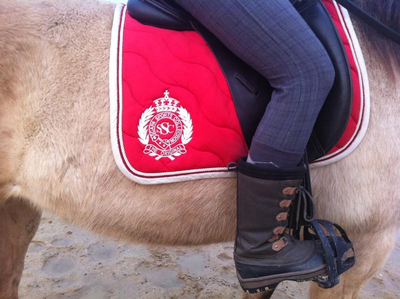 materiel cavalier et cheval GROSSES PROMO JUSQUE FIN DECEMBRE!!! Img_1210