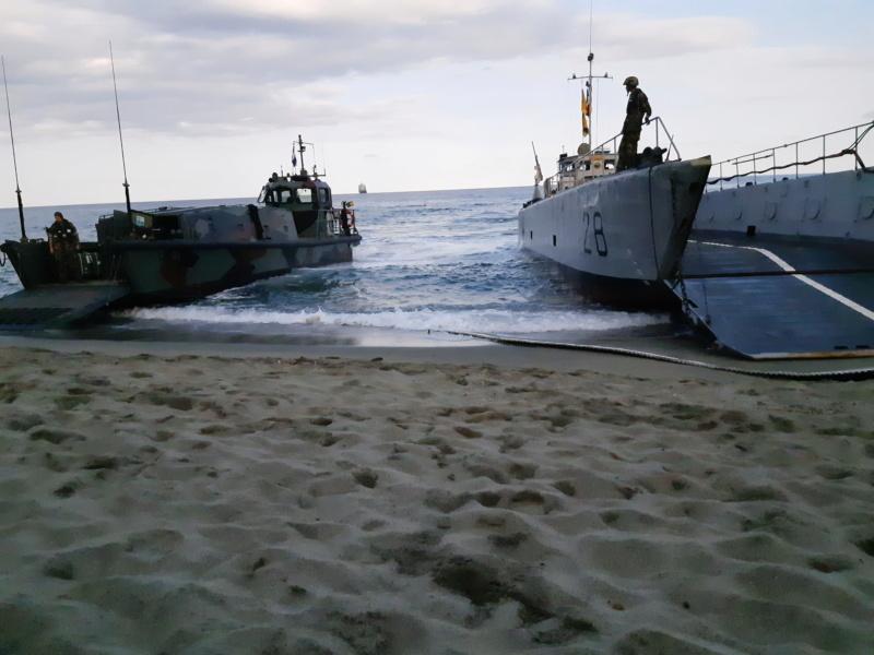 [Les Ports Militaires de Métropole] Toulon Exercice Dynamic Mariner 20 50422513
