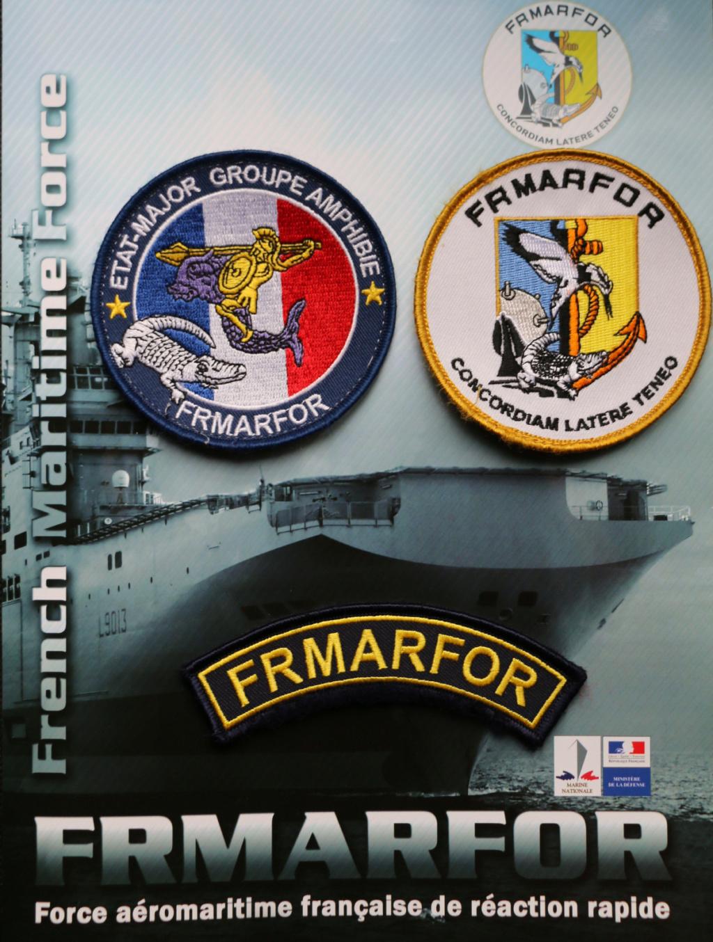 [LES ÉTATS-MAJOR DES PORTS ET RÉGIONS] FRMARFOR (Force Aéromaritime Française de Réaction Rapide) Img_9717
