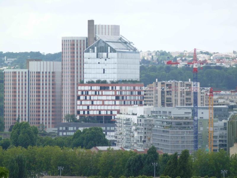 Photos de Rives de Seine depuis Issy / Meudon / Sèvres P1040813