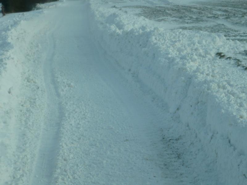 la neige est-elle arrivée chez vous ?  - Page 2 P1000112