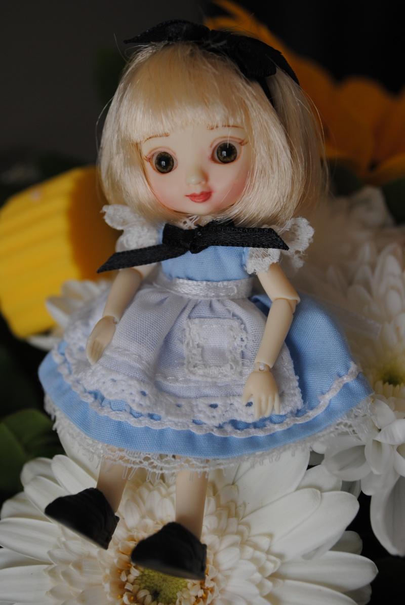 Amelia de nouveau à la maison^^ Dsc_1729