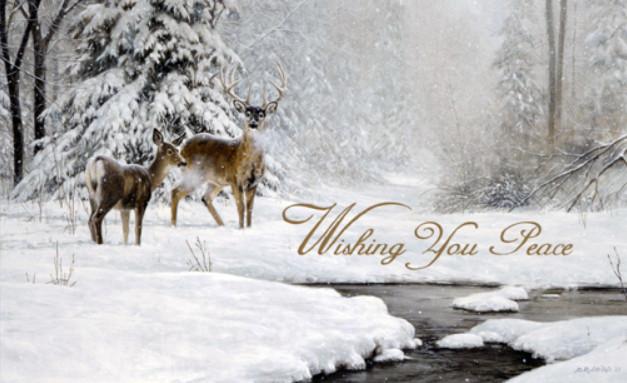 Christmas Greetings - Page 2 2020-111