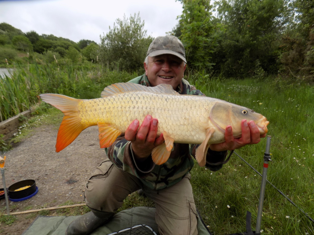 carp were having it this day Angels14